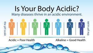 Alkaline water a Natural Treatment of Blood Pressure and Cholesterol